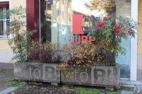 ReverseGraffiti-TOB-5